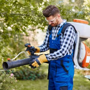 Gardener using a gas-powered backpack leaf blower