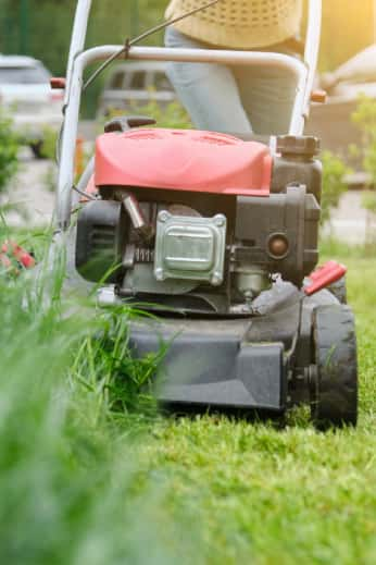 Front view of lawnmower cutting tall grass